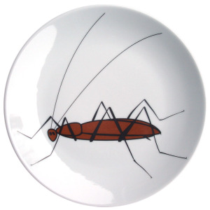 Bord kakkerlak