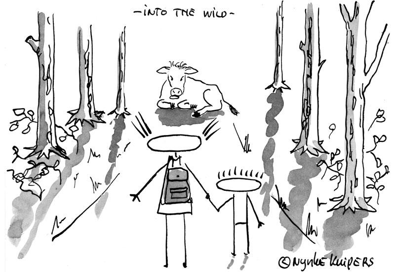 into-the-wild.001
