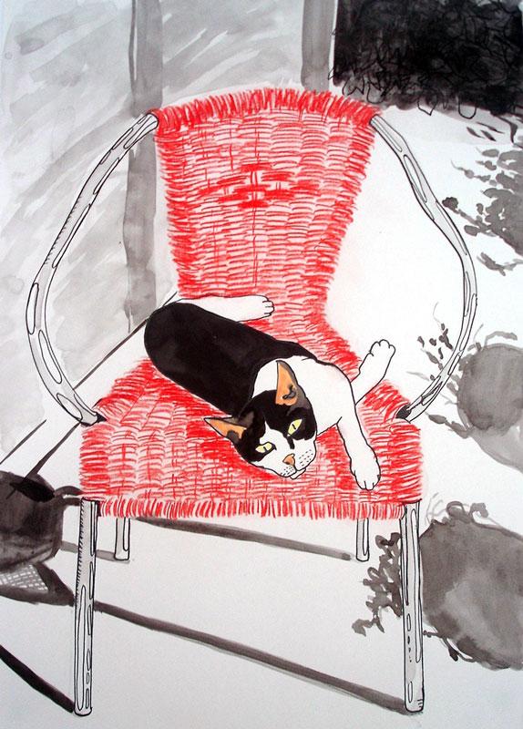 kat-op-rode-stoel
