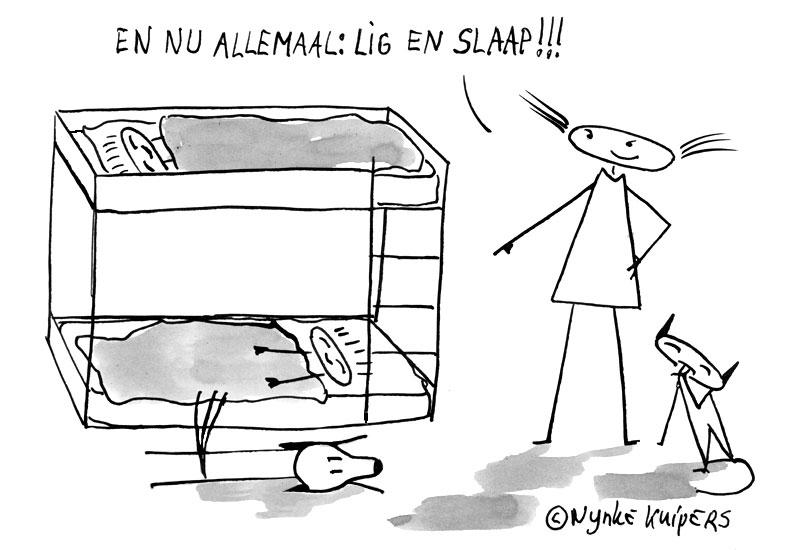 lig-&-slaap