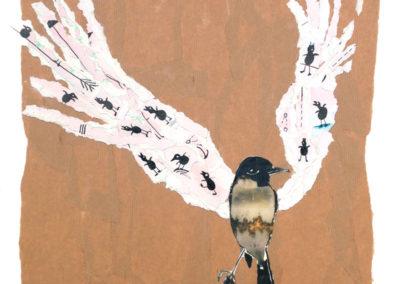 birdie.w