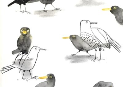 Blackbirds-1