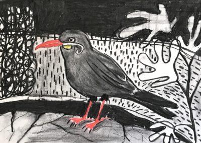 Incastern. Houtskool en krijt op papier, 2019. 40 x 50 cm.