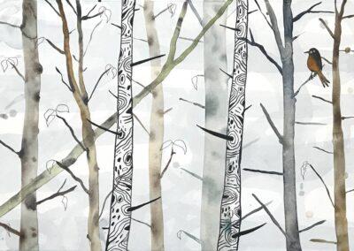 Bos en bomen